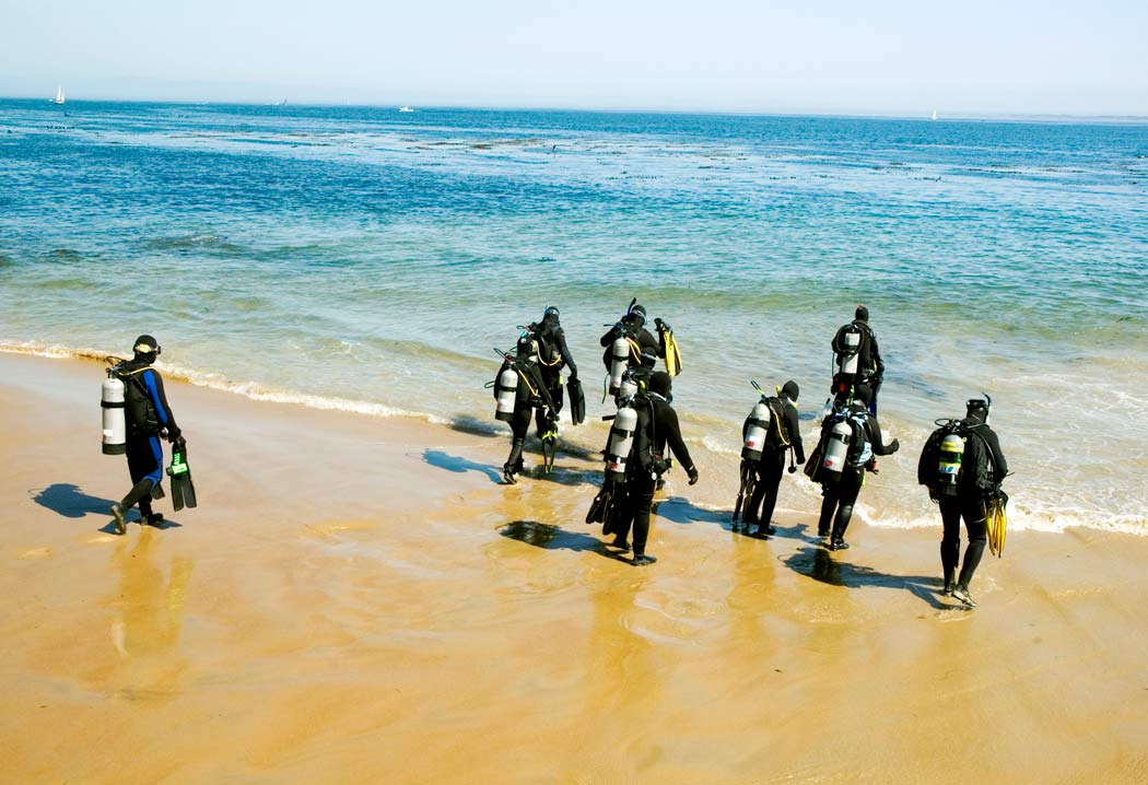 Shore diving scuba diving news gear education dive - Dive training magazine ...