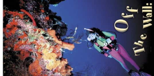 Scuba Diving | Wall diving feature image