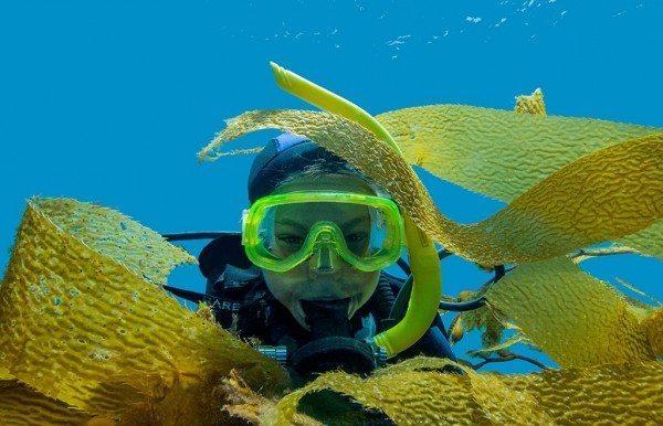 Scuba Diving | Photo by Douglas Klug