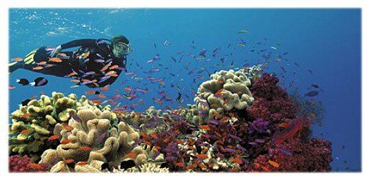 Fiji - photo by Ruth & Barry Guimbellot