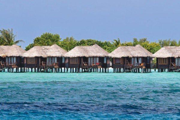 Scuba Diving | Maldives - Photo by Scott Johnson