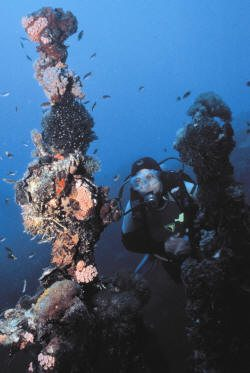 Smoking and Diving - A Bad Combination | Scuba Diving News