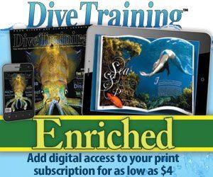 Dive Training Enriched