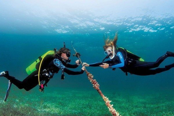 Scuba Diving | Safety stop dive skill