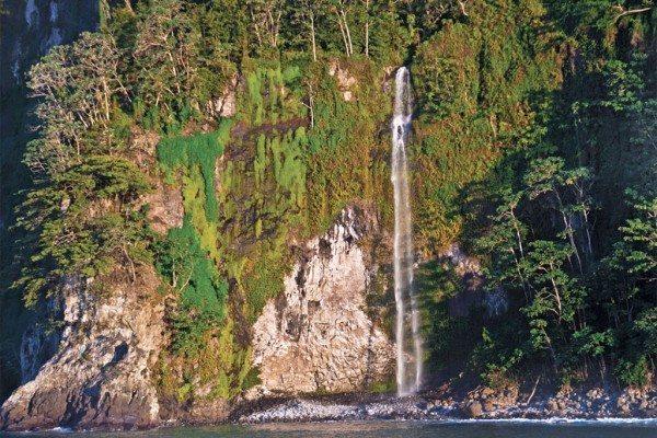 Scuba Diving   Cocos Island Waterfall
