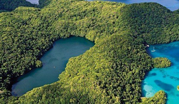 Scuba Diving | Palau Landscape