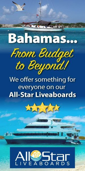 All-Star Liveaboards