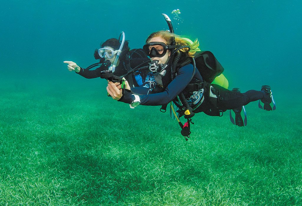 Dive Compass Basics