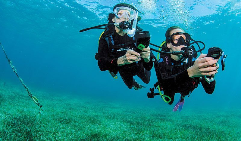 Divers navigating with a compass