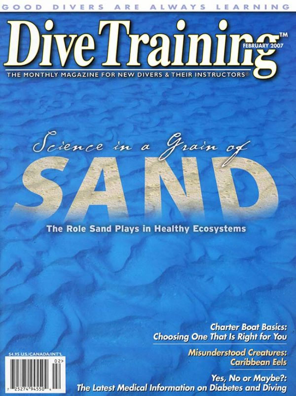 Scuba Diving | Dive Training Magazine, February 2007