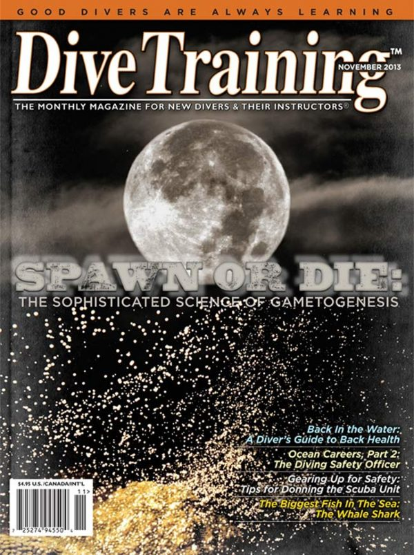 Scuba Diving | Dive Training Magazine, November 2013