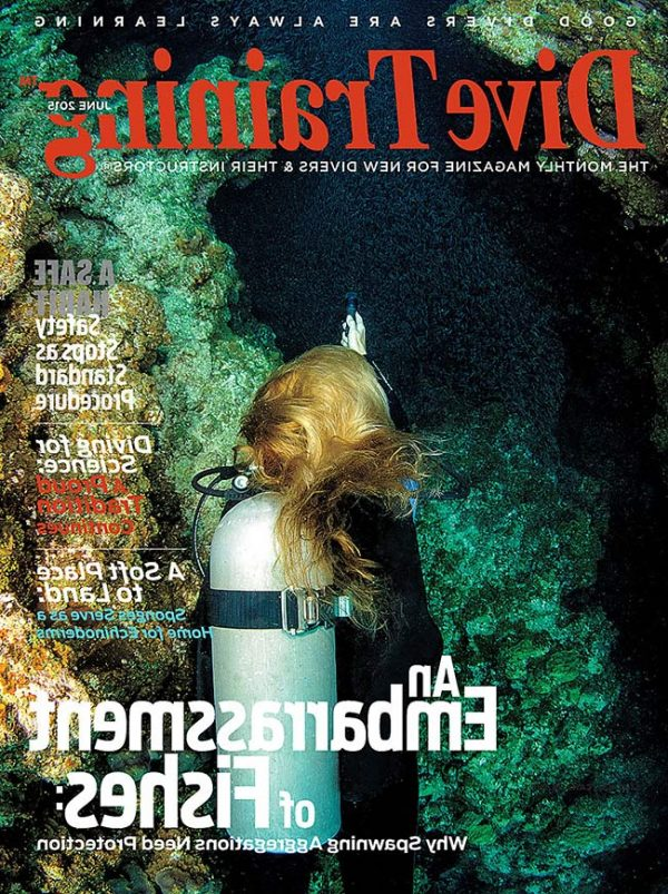 Scuba Diving | Dive Training Magazine, June 2015