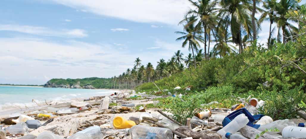 Plastic Pollution On A Beach A Growing Industry