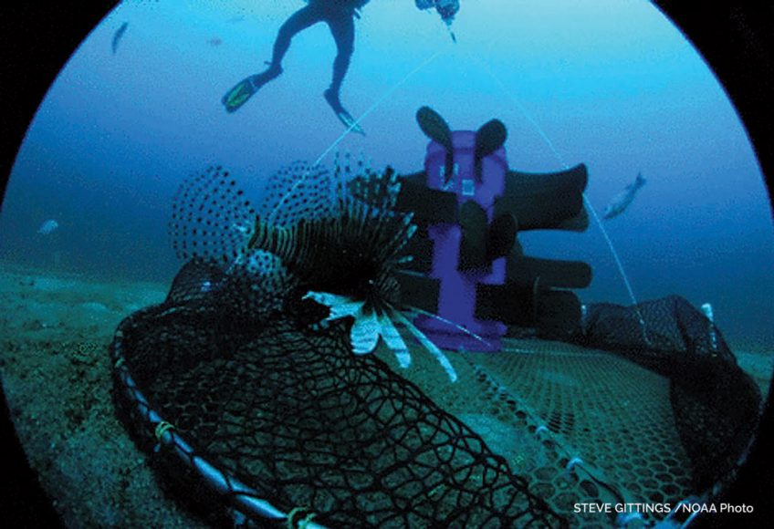 NOAA lionfish trap