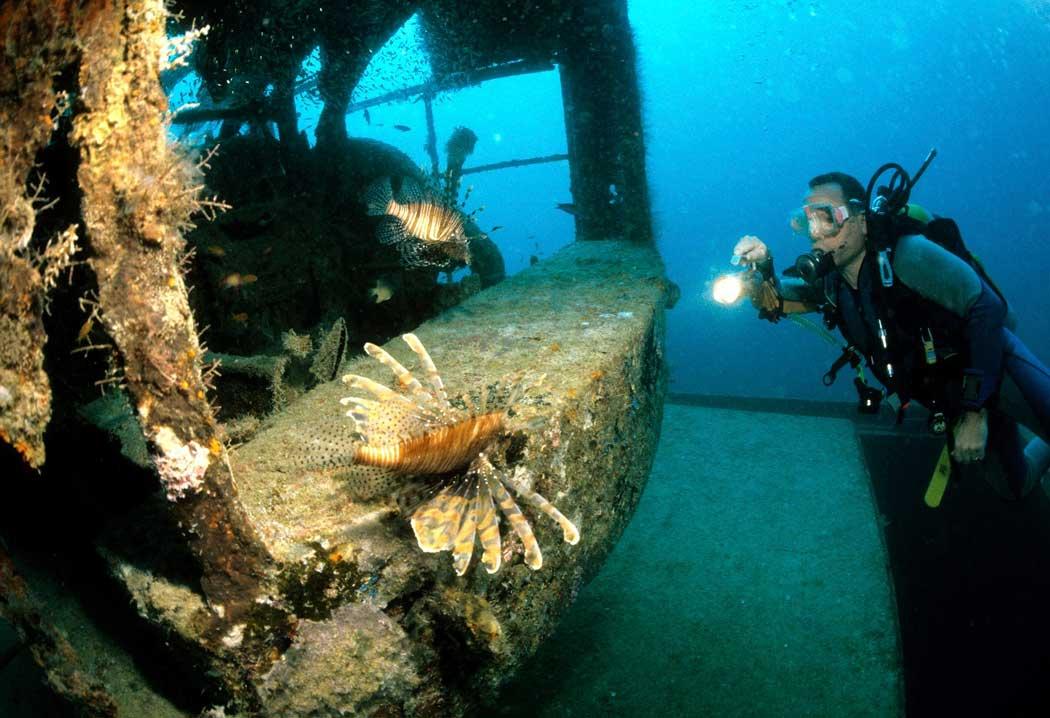 lionfish shipwreck scuba diver