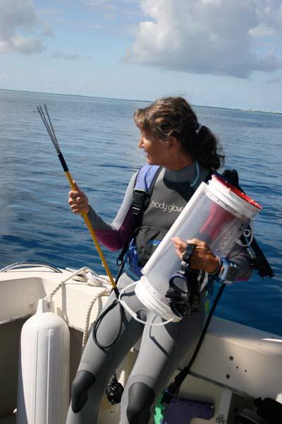 scuba diver lionfish spear