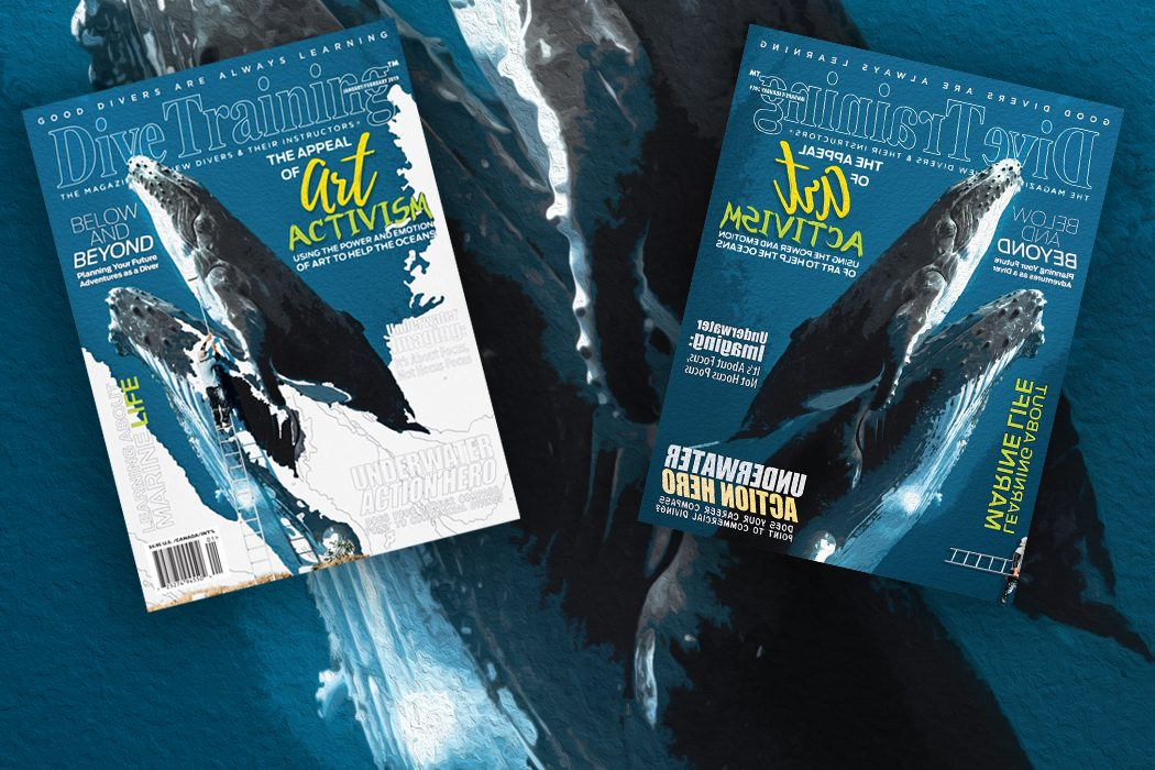 Inside the january february 2019 issue scuba diving news - Dive training magazine ...