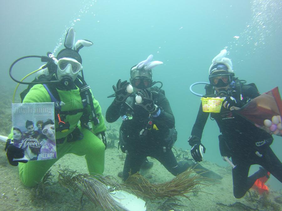 scuba diving Florida