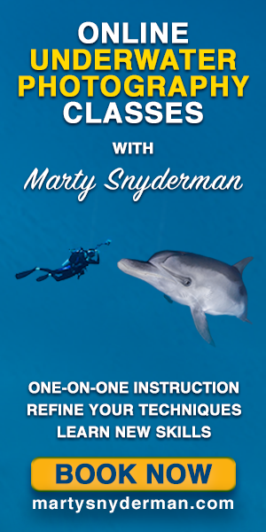 Marty Snyderman U/W Photography