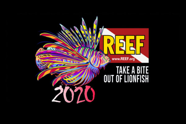 REEF 2020 Lionfish Derby Logo