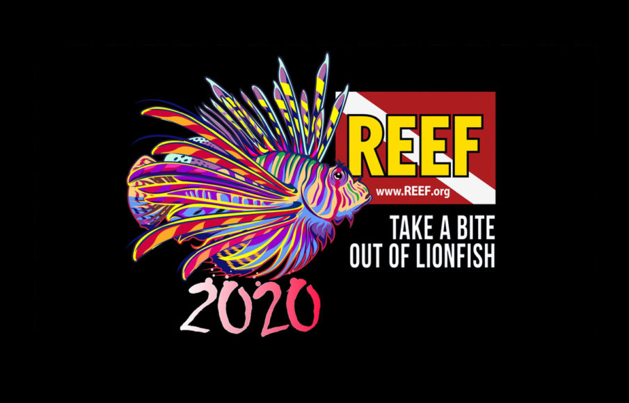 REEF 2020 Lionfish Derby Logo